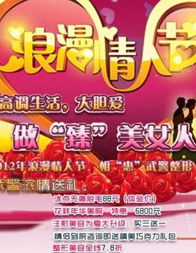 """2012年浪漫情人节 相""""惠""""武警整形"""